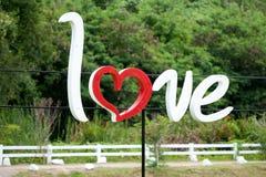 Amour avec le fond de forêt Photos libres de droits
