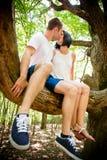 Amour - baiser sur l'arbre Photos stock