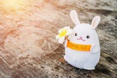 Amour blanc de prise de poupée de lapin vous message Photos stock