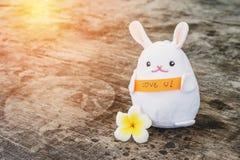 Amour blanc de prise de poupée de lapin vous message Images libres de droits