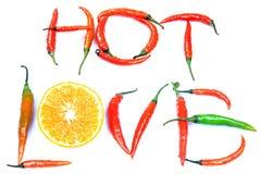 Amour chaud Image libre de droits
