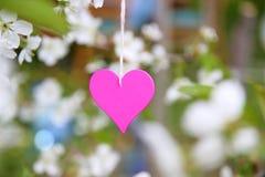 Amour Coeur en bois dans les fleurs de cerisier Pince à linge en bois sous forme de coeur Photographie stock libre de droits