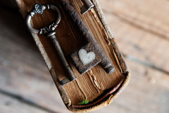 Amour, concept de valentine Photographie stock