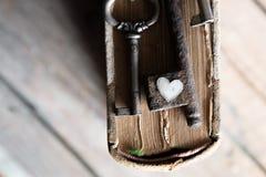 Amour, concept de valentine Image stock