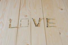 Amour cruel des clous Photo libre de droits