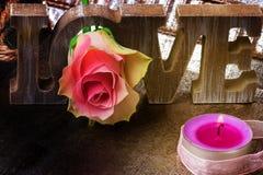 Amour, décoration, Rose, Saint-Valentin Image libre de droits