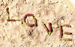 Amour défini en nature Photographie stock