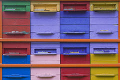 Amour d'abeilles coloré Image stock