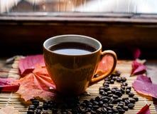 Amour d'automne au café Photos libres de droits