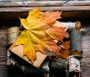 Amour d'automne pour des livres Images libres de droits