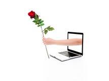 Amour d'Internet Image libre de droits