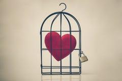 Amour dans la cage Photo libre de droits