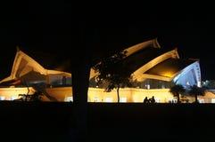 Amour dans la nuit 2 Images libres de droits