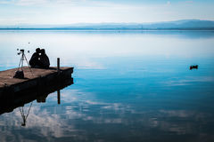 Amour dans le lac Photo stock