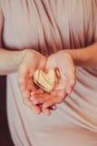 Amour dans les mains de Images libres de droits