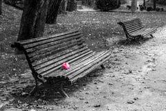 Amour dans rosa Photographie stock