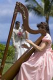 Amour dans une harpe Photo libre de droits