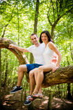 Amour - date sur l'arbre Photo stock