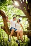 Amour - date sur l'arbre Image libre de droits