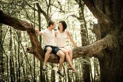 Amour - date sur l'arbre Photos libres de droits