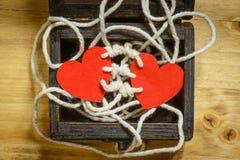 Amour de bondissement Image stock