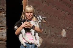 Amour de chèvre Photographie stock