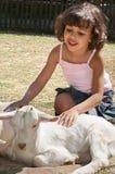 Amour de chèvre Image libre de droits