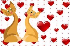 Amour de chat Images libres de droits