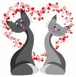 Amour de chat Photographie stock