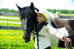Amour de cheval Photo stock