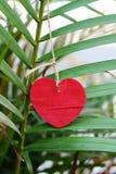 Amour de coeur Photo libre de droits