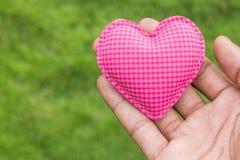 Amour de coeur de prise de main sur le fond d'herbe Photo libre de droits