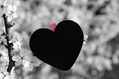 Amour de coeur de tableau Image stock