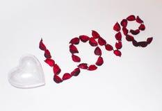 Amour de coeur et de mot présenté des fleurs artificielles sur un fond blanc Photo libre de droits