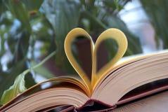 Amour de coeur de livre Photo libre de droits