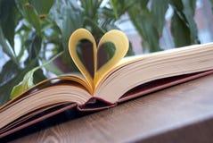 Amour de coeur de livre Image stock