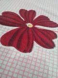 Amour de fleur Photographie stock