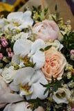 Amour de fleur au premier regard Photos libres de droits