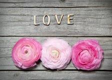 AMOUR de fleurs et de lettres de Ranunculus sur le bois Photographie stock
