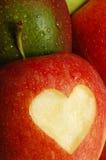 Amour de fruit Image libre de droits