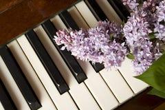 Amour de la musique - lilas pourpré Photo stock