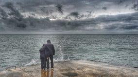 Amour de lac Images libres de droits