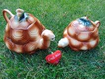 amour de ` le ` de tortues Photos stock