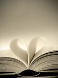 Amour de lecture Photos stock