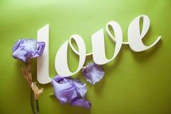 AMOUR de lettres avec des fleurs d'iris Photographie stock