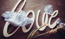 AMOUR de lettres avec des fleurs d'iris Photos stock