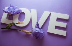 AMOUR de lettres avec des fleurs d'iris Photo stock