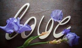 AMOUR de lettres avec des fleurs d'iris Photos libres de droits