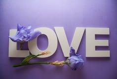 AMOUR de lettres avec des fleurs d'iris Photo libre de droits