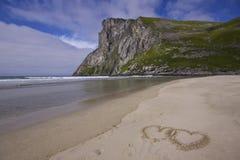 Amour de Lofoten Image libre de droits